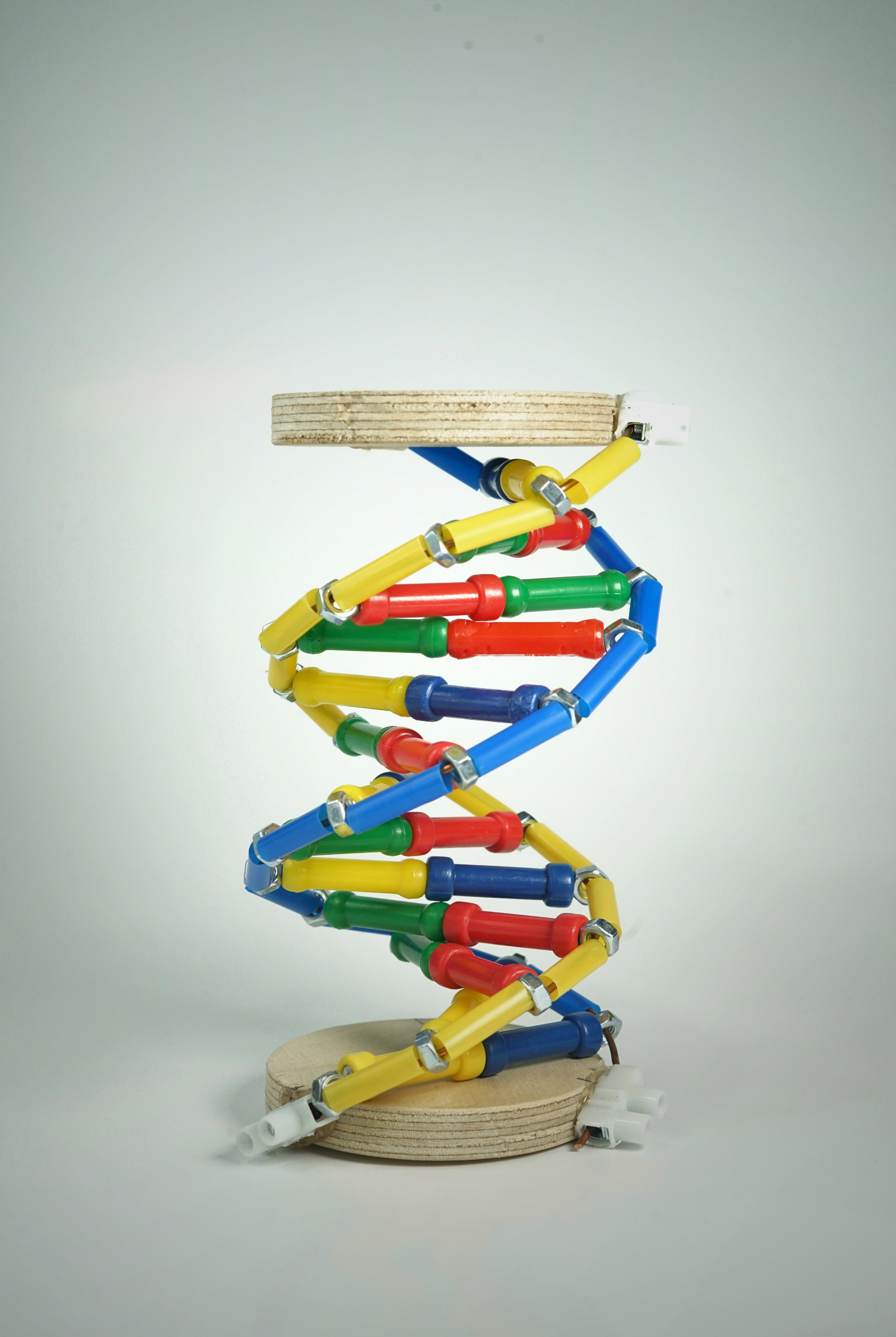 DNA-MODELL  Bastel Set
