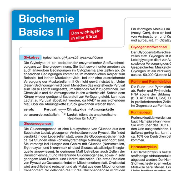 Biochemie Basics II – Das Lernposter DIN A2